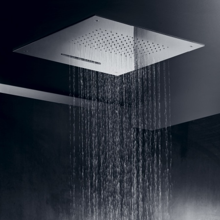 Ceiling shower plate